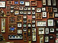 Seattle - Curiosity Shop lepidoptera 01.jpg