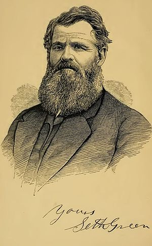 Seth Green (pisciculture) - Image: Seth Green from Trout Culture (1870)