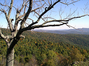 Climate of Virginia - Due to its elevation, the Blue Ridge Mountains have a humid continental climate.