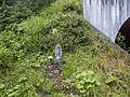 Shirotoricho Mukaikodara, Gujo, Gifu Prefecture 501-5126, Japan - panoramio.jpg