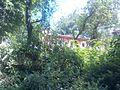 Shivapuri-Nagarjun National Park (37).jpg