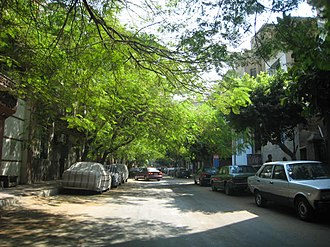 Shubra - El-Gesr Street in Shubra, Cairo. This street, like many others throughout Shubra's neighborhoods, is almost entirely covered with trees.