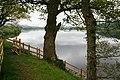 Shore of Lake Bala - geograph.org.uk - 1309154.jpg