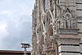 Siena Cathedral detail 09 (2017).jpg