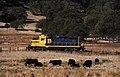 Sierra RR Nov 1 2013 119x4RP (10697828865).jpg