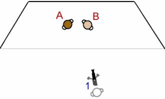Single-camera setup - Diagram showing a single-camera setup.