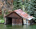 Sinking Memories, Grand Lake, CO (5991904234).jpg