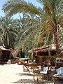 Siwa Oasis, Qesm Siwah, Matrouh Governorate, Egypt - panoramio (1).jpg