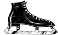 Skate - Shoe (PSF).png