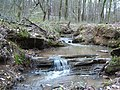 Small Stream Webb Bridge Park Alpharetta GA - panoramio.jpg