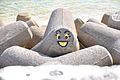 Smile face (3534599415).jpg