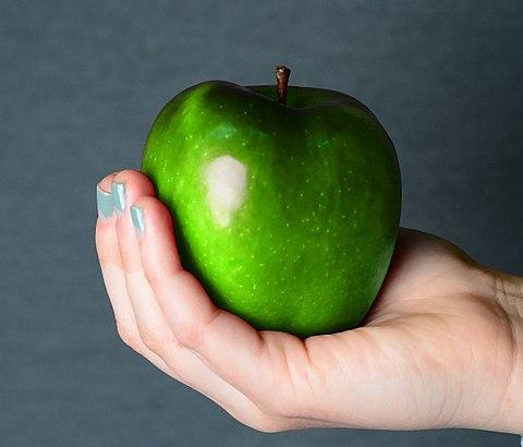 Hältst du einen Apfel spürst du die Kraft von ca. 1N image source
