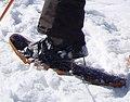 Snowshoe heel lift cropped.jpg