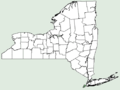 Sonchus tenerrimus NY-dist-map.png