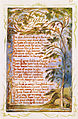 Songs of Innocence and of Experience, copy Y, 1825 (Metropolitan Museum of Art) object 20 NIGHT.jpg