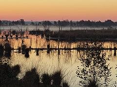 Sonnenaufgang im Huvenhoopsmoor.JPG