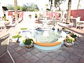 Sonora Desert Museum Tuscon Arizona - panoramio (9).jpg
