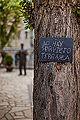 Spain - No hay servicio terraza - Image Picture Photography (14251595449).jpg