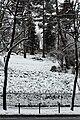 Square Samuel-de-Champlain (Paris) sous la neige, vu depuis l'avenue Gambetta 03.jpg