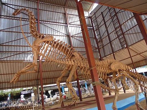 Squelette d'un dinosaure au musée national au Niger