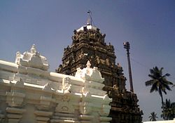 Sri Kurmam Temple view