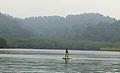 Standup Paddle - Pulau Singa Besar - Eagle Feeding - Langkawi - Malaysia.jpg