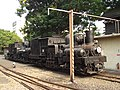 Steam locs by Alishan railway depot.jpg