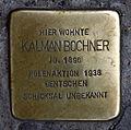 Stolperstein Alte Schönhauser Str 23-24 (Mitte) Kalman Bochner.jpg