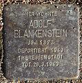 Stolperstein Sierichstraße 98 (Adolf Blankenstein) in Hamburg-Winterhude.JPG