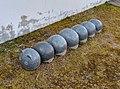 Stone Caterpillar at Geumgang Migratory Bird Observatory, South Korea.jpg