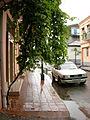Street in Batumi.jpg
