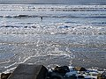 Surfers at Lehinch - geograph.org.uk - 1606161.jpg