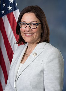 Suzan DelBene, official portrait, 115th Congress.jpg
