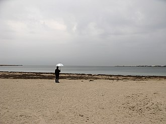 Copenhagen Harbour Baths - Svanemølle Strand on a gloomy day.
