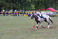 Swiss Pony Games 2011 - Finals - 048.JPG