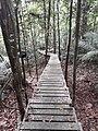 Taman Negara National Park OMIMG 20190712 101628.jpg