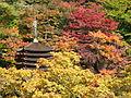 Tanzan-jinja 13-storied pagoda01.JPG