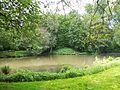 Teich - panoramio (14).jpg