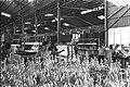 Tempo factory in Yeruham 1968.jpg