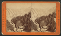 Tenaya Canyon from the South Dome, Yosemite Val.,, by J. W. & J. S. Moulton.png