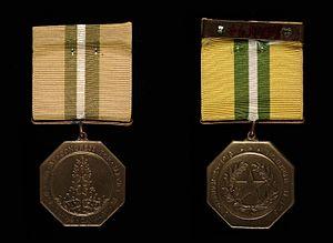 Texas Cavalry Medal