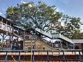 Thanjavur Railway Junction IMG 20180512 154338323 HDR.jpg