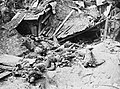 The Battle of the Somme, July-november 1916 Q4256.jpg