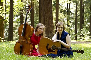 Nerd-folk - The Doubleclicks in 2013.