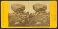 The Elevated Boulder, Bartlett, N.H, by Pease, N. W. (Nathan W.), 1836-1918 2.png