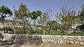 The Garden (4057139294).jpg