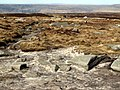 The Pennine Way - geograph.org.uk - 397866.jpg