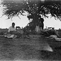 The Second Boer War, 1899-1902 Q72080.jpg