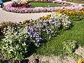 The TNU Botanical Garden in Simferopol, Crimea, Ukraine 36.jpg