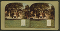 The law library, Cambridge, Mass, from Robert N. Dennis collection of stereoscopic views.png